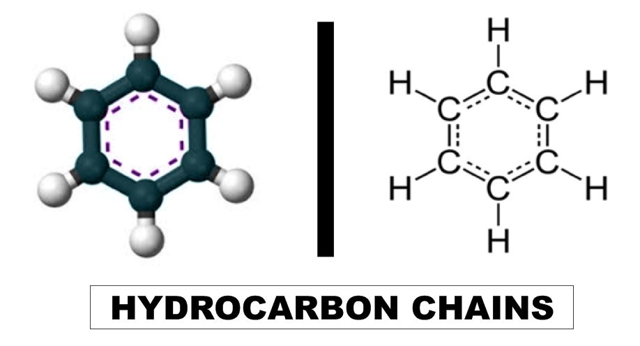 about hydrocarbon chain